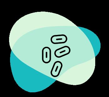 Saccharomyces boulardii CNCM I-745
